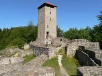 Burgen Bayerischerwald Burgruine in Altnussberg