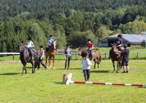 Ponyhof in Bayern Reiturlaub Bayerischer Wald