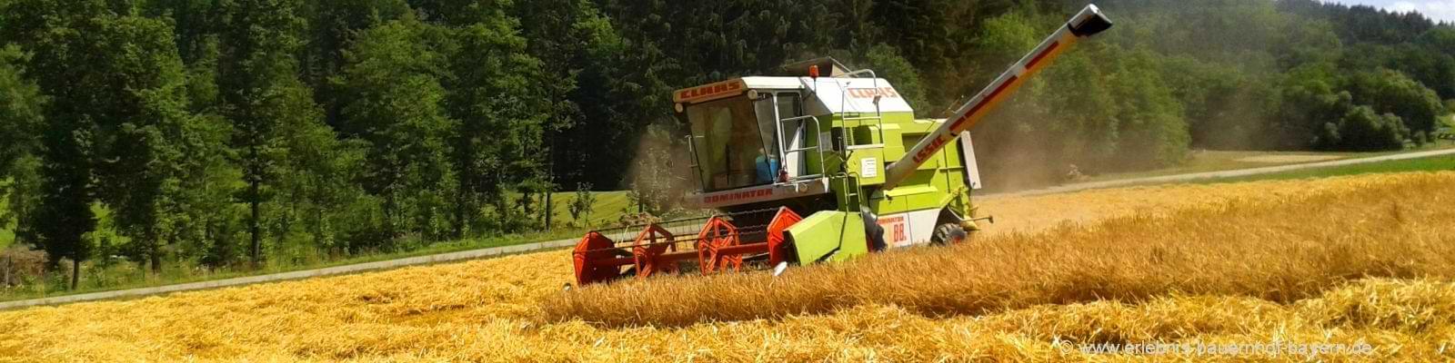 Erlebnis Bauernhof Bayern