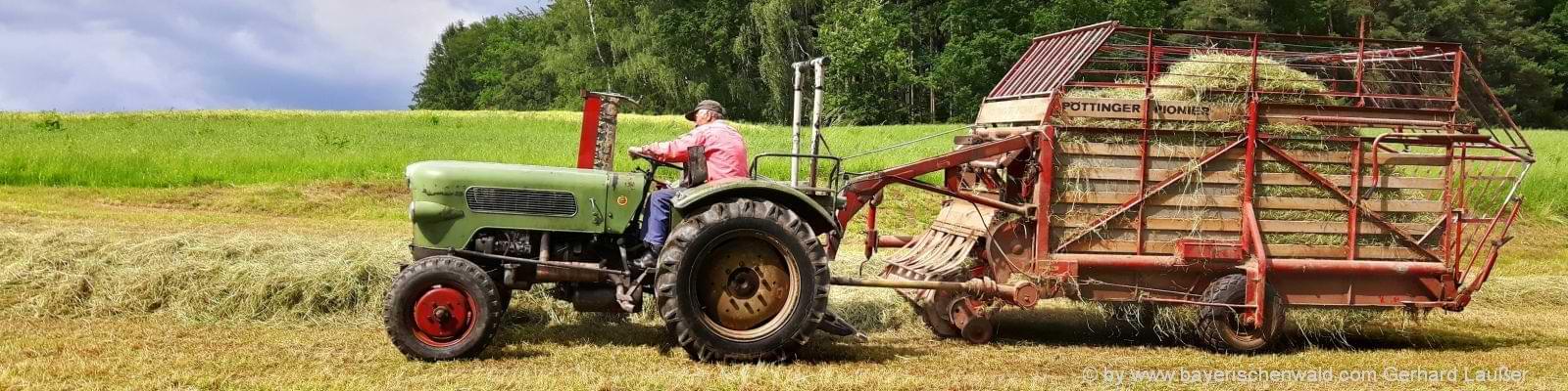 Kinder und Familien Urlaub auf dem Bauernhof in Bayern