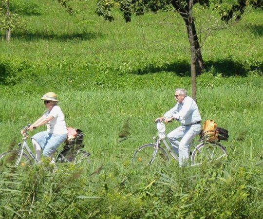 Radreisen in Bayern Bayerisacher Wald Fahrradurlaub