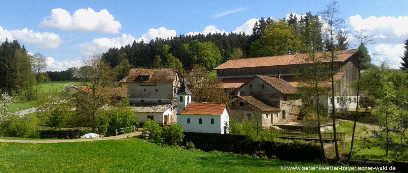 Familien und Kinder Bauernhof Fingermühl im schönen Bayerischen Wald